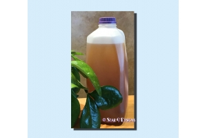 neem & tea tree liquid soap
